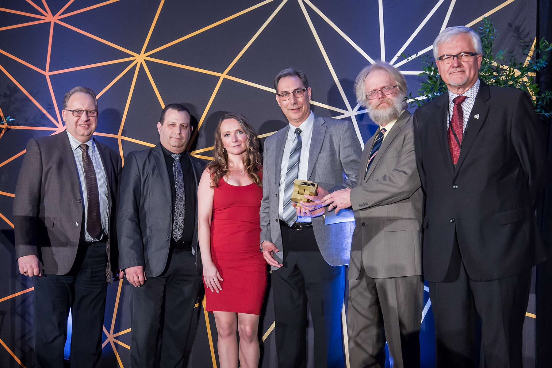 Business Excellence Innovation Award