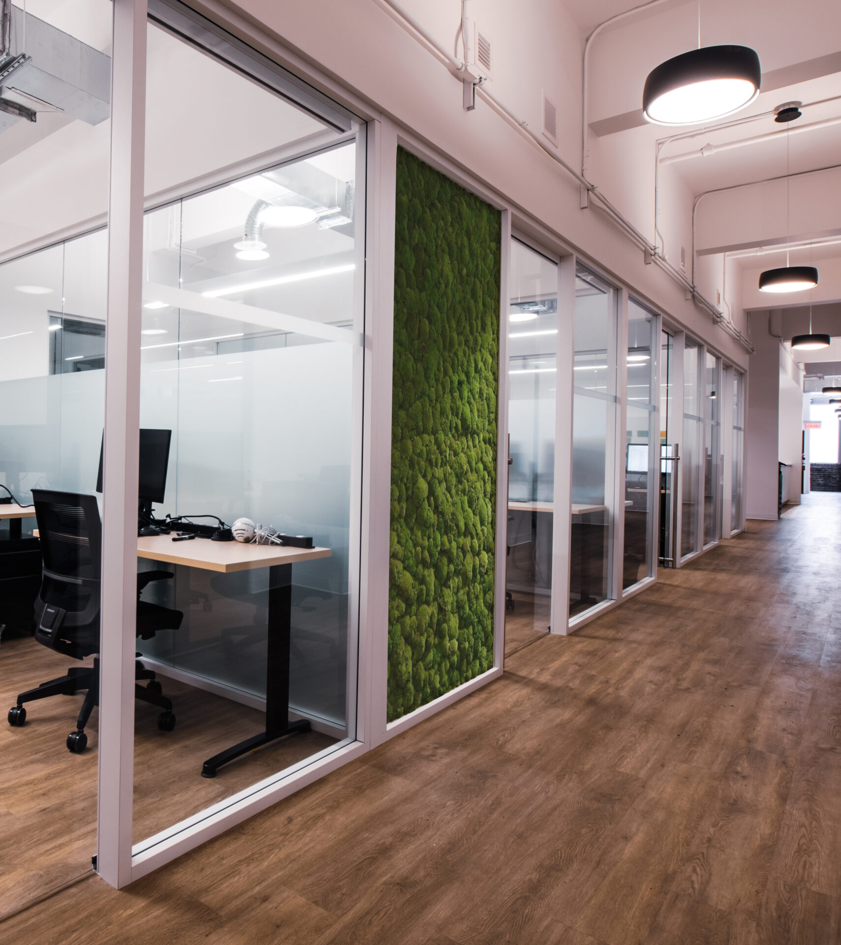 Starwall's versatility in action:  Living Moss panel integrated in place of glass