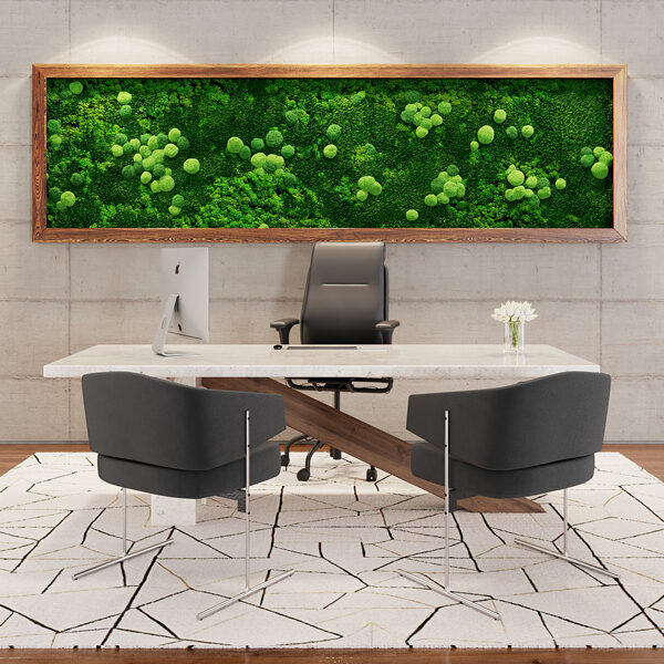 Quiet Earth Moss: framed wall green spaces with acoustical value.